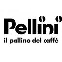 Pellini Компания Pellini Caffe S.p.A (Италия) занимает одно из лидирующих мест среди итальянских производителей кофе.  Как и множество прочих итальянские кофейные компании, Pellini – это семейный бизнес. Братья Пеллини, жившие в городке Буссоленго, в окрестностях Вероны, в 1922 году ...